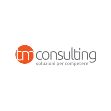 TeAM-partners-TM-consulting